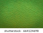 closeup detail of green leather ... | Shutterstock . vector #664124698