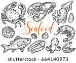 salmon  tuna fish steak  crab ... | Shutterstock .eps vector #664140973