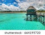 beautiful clear green blue...   Shutterstock . vector #664195720