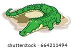 brazilian alligator  | Shutterstock .eps vector #664211494