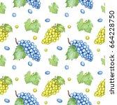 watercolor hand drawing grape... | Shutterstock . vector #664228750