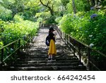 japanese woman stairs to the... | Shutterstock . vector #664242454