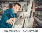 diligent professional  labour... | Shutterstock . vector #664309630