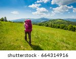 beautiful sunny day at... | Shutterstock . vector #664314916
