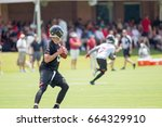 atlanta falcon open practice... | Shutterstock . vector #664329910