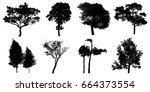 silhouette tree isolated on... | Shutterstock . vector #664373554