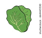 lettuce vegetable icon | Shutterstock .eps vector #664445530