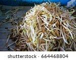 fresh bean sprouts | Shutterstock . vector #664468804