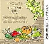 organic shop advertisement with ... | Shutterstock .eps vector #664469578