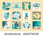 set of summer tropical designs. ... | Shutterstock .eps vector #664476418