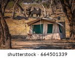 safari tent with single african ... | Shutterstock . vector #664501339