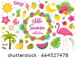 hello summer collection of... | Shutterstock .eps vector #664527478
