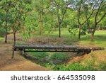 wooden bridge in rodfai park ... | Shutterstock . vector #664535098