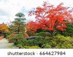 shoyo en  japanese garden in...   Shutterstock . vector #664627984