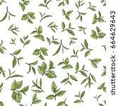 seamless pattern green tea ... | Shutterstock .eps vector #664629643