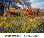 texas hill country is a 25... | Shutterstock . vector #664630864