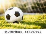 closeup soccer ball on green... | Shutterstock . vector #664647913