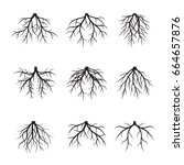 collection of black roots.... | Shutterstock .eps vector #664657876