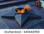 volgograd  russia   12 june... | Shutterstock . vector #664666900