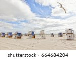 seagull flying over beach... | Shutterstock . vector #664684204