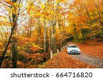 white car on a forest trail.... | Shutterstock . vector #664716820