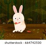 pet animal rabbit eating carrot ...   Shutterstock .eps vector #664742530