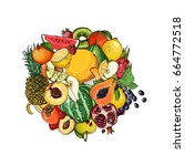 a circle of fruits. fresh food. ... | Shutterstock .eps vector #664772518