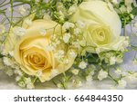 yellow and white roses with...   Shutterstock . vector #664844350
