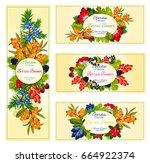wild berries banners set of... | Shutterstock .eps vector #664922374