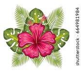 tropical flowers design | Shutterstock .eps vector #664981984