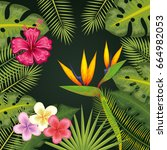 tropical flowers design | Shutterstock .eps vector #664982053