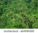 rio dulce  guatemala  boat to...   Shutterstock . vector #664984300