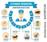 vet clinic infographic banner... | Shutterstock .eps vector #665089108