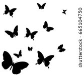 black butterfly  isolated on a... | Shutterstock .eps vector #665104750
