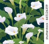 Seamless Pattern Of Calla Lily...