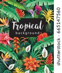background from tropical... | Shutterstock .eps vector #665147560