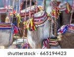 traditional ethnographic sami... | Shutterstock . vector #665194423
