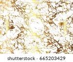 vector image of white veiny... | Shutterstock .eps vector #665203429