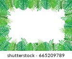 tropical leaves watercolor... | Shutterstock . vector #665209789