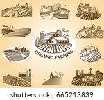 vector design elements with... | Shutterstock .eps vector #665213839