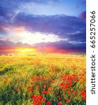 summer field with flowers at... | Shutterstock . vector #665257066