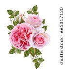 flower arrangement of delicate... | Shutterstock . vector #665317120