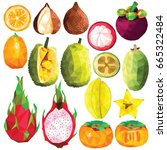 exotic fruit set colorful low... | Shutterstock .eps vector #665322484