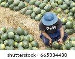 sritheph thailand june 28  2017 ...   Shutterstock . vector #665334430