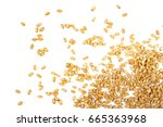 wheat grain isolated on white... | Shutterstock . vector #665363968