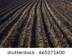 black soil plowed field. earth... | Shutterstock . vector #665371600