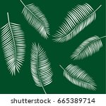 palm tree vector illustration | Shutterstock .eps vector #665389714