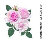 flower arrangement of delicate... | Shutterstock . vector #665621119