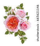 flower arrangement of delicate... | Shutterstock . vector #665621146