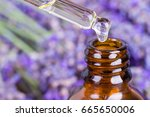 Lavender Oil.essential Oil ...